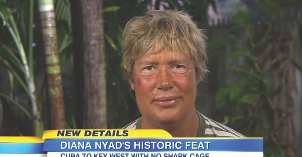 If Merriam-Webster Defined 'Amazeballs,' I'm Pretty Sure Diana Nyad Would Be It