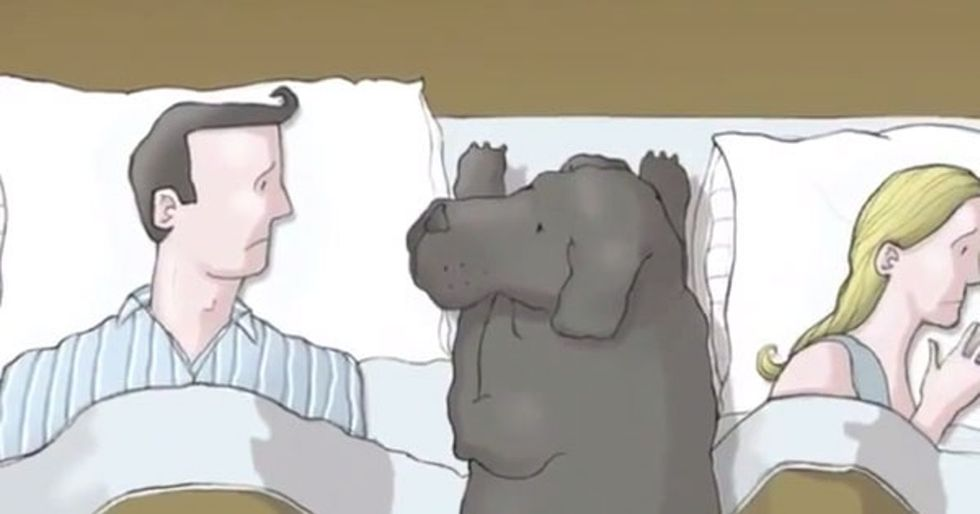 What Is Depression? Let This Animation With A Dog Shed Light On It.