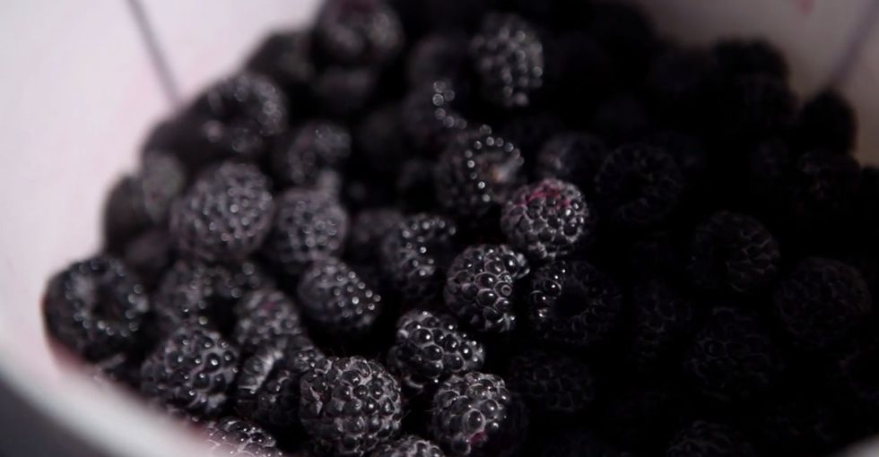 A Short, Beautiful Look At How Your Favorite Berries Make It To Your Fridge