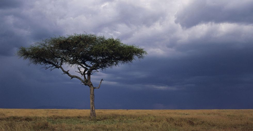 5 Big Things We've Been Led To Believe About Africa That Actually Aren't True