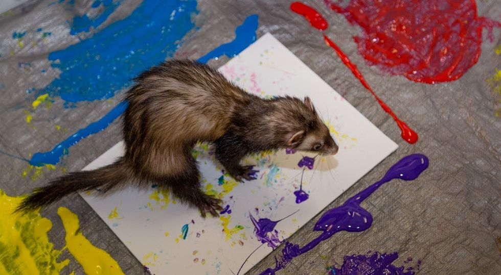 This zoo had their animals make paintings for a good cause. They're adorable.