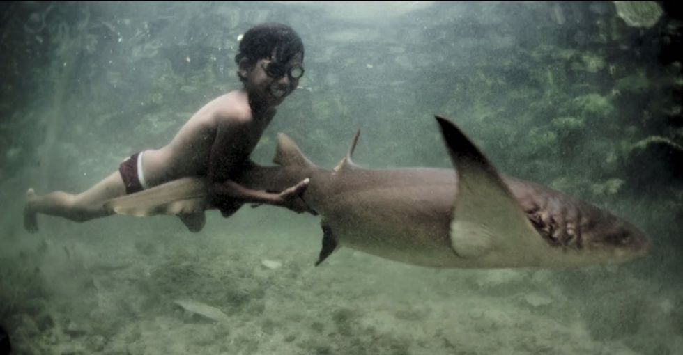 These Kids Literally Swim With Sharks. But What's Really Scary Is How Their Parents Make A Living.