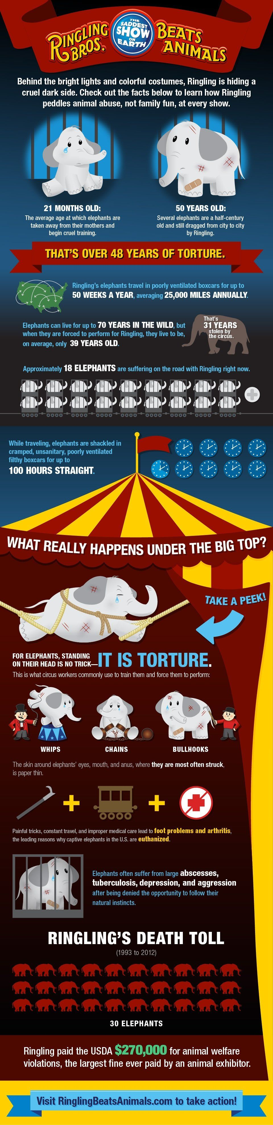 Please stop going to the circus  It's an awful place, and