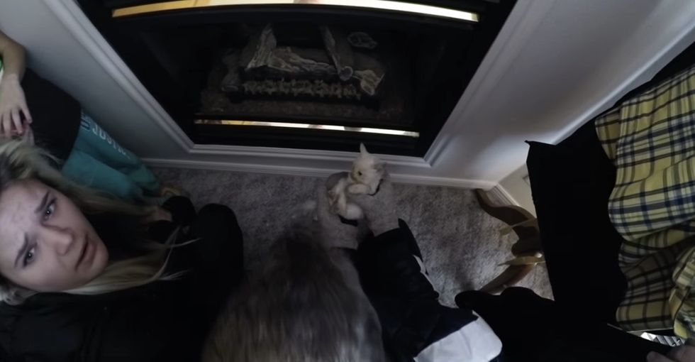 They had a GoPro running when they found a kitten in the snow. See the miraculous rescue.