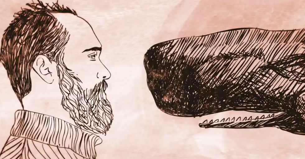 Whales Sing Great Melodies With Fantastic Lyrics. Listen Closely.