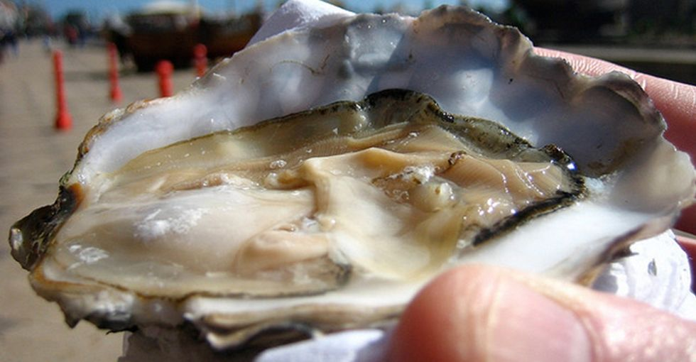 When He Tweeted This Picture Of Oysters, He Probably Wasn't Expecting This Sort Of Response
