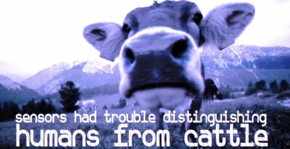 53 Miles Of Fence, $1 Billion, And Sensors That Can't Tell Cattle From People...