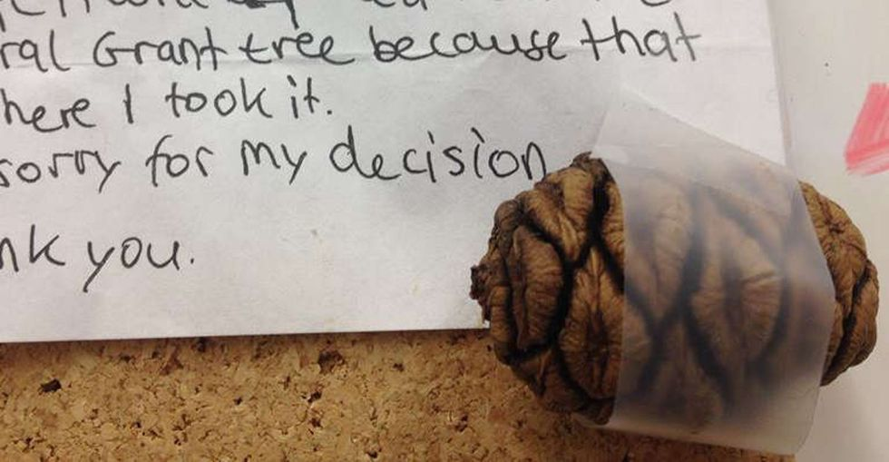 A national park worker opened a bumpy envelope to find an adorable note — and a surprise.