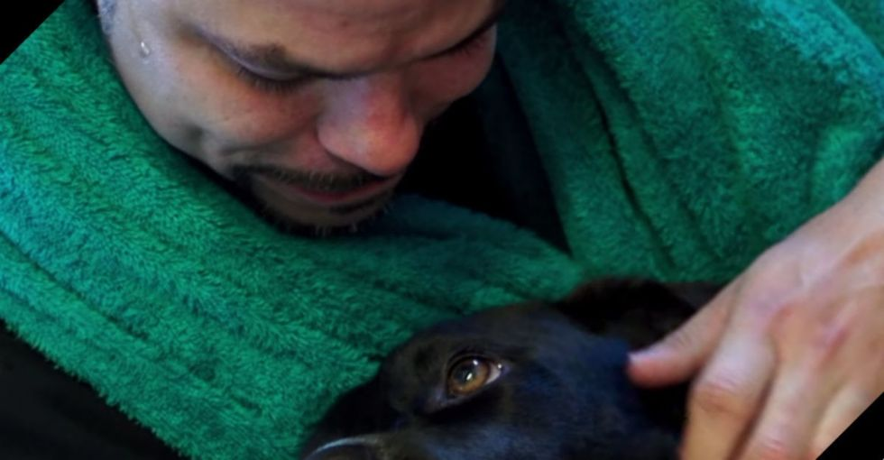 A dog on the verge of death meets a prisoner with no hope