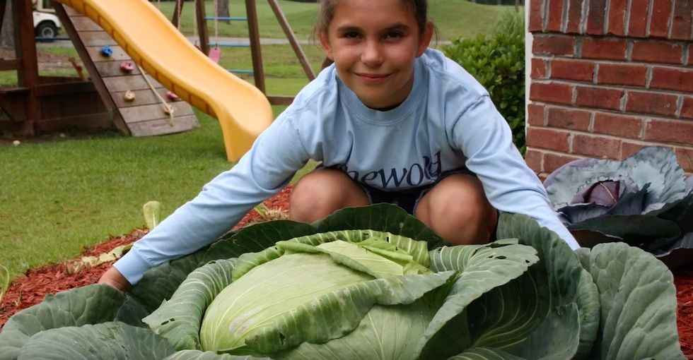 How a giant cabbage eventually helped this girl feed hundreds of thousands of people.