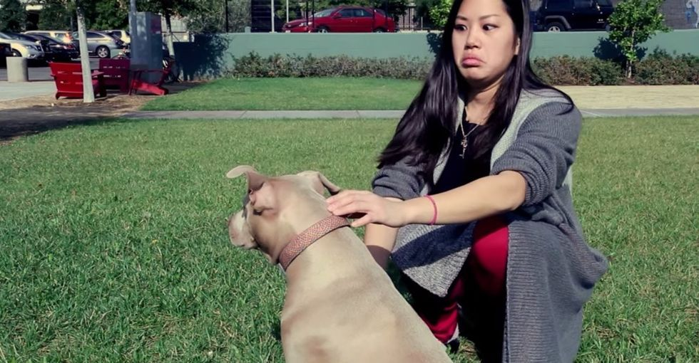 What happens when a non-dog-person meets a pit bull for the first time? Hint: it's not violent.