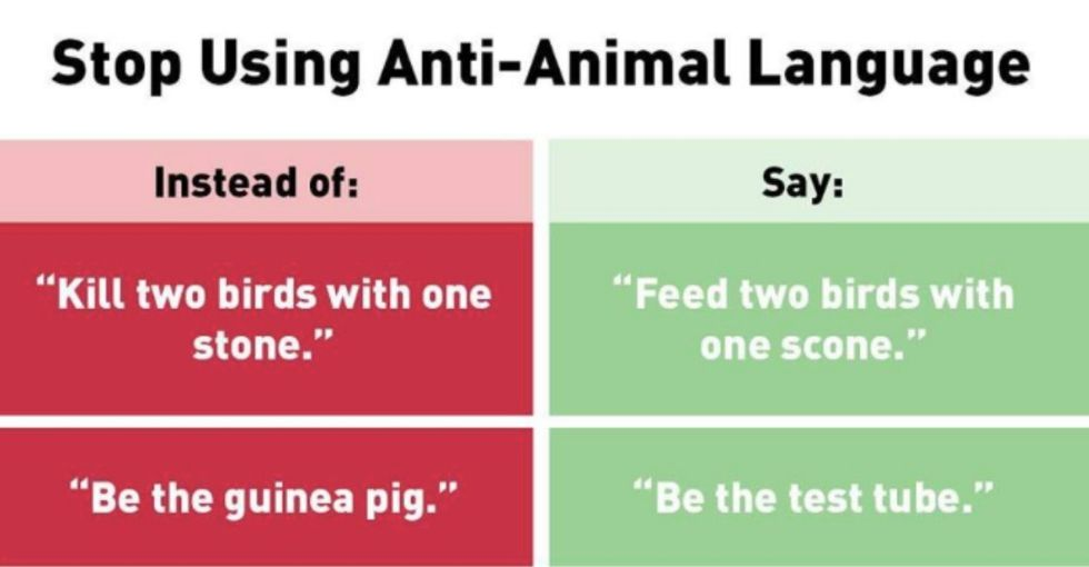 PETA has officially jumped the shark with this meme. (Wait, can I say that?)