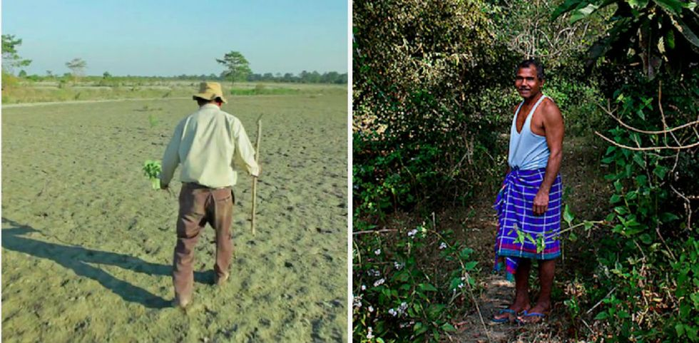 He planted a tree every day for 40 years and transformed this island into a paradise.