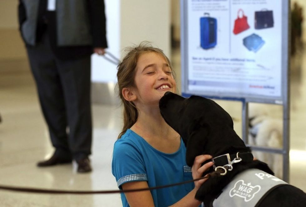 These adorable pics of dogs at airports show why pups are the ultimate stress reliever.