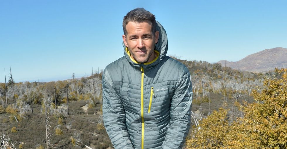 People are hugging trees because Ryan Reynolds asked them to, and it's great.