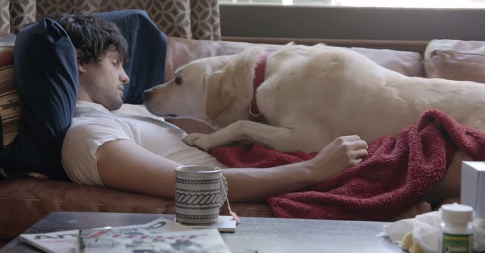 30 seconds in, the dog whimpers. And my heart drops. Thankfully, this story has a happy ending.