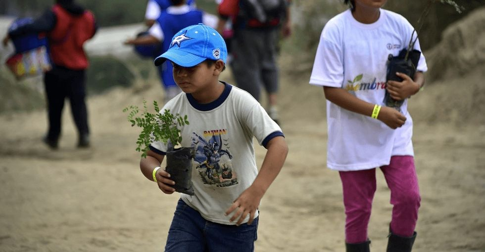 More than 44,000 people came together to set the Guinness World Record for reforestation.