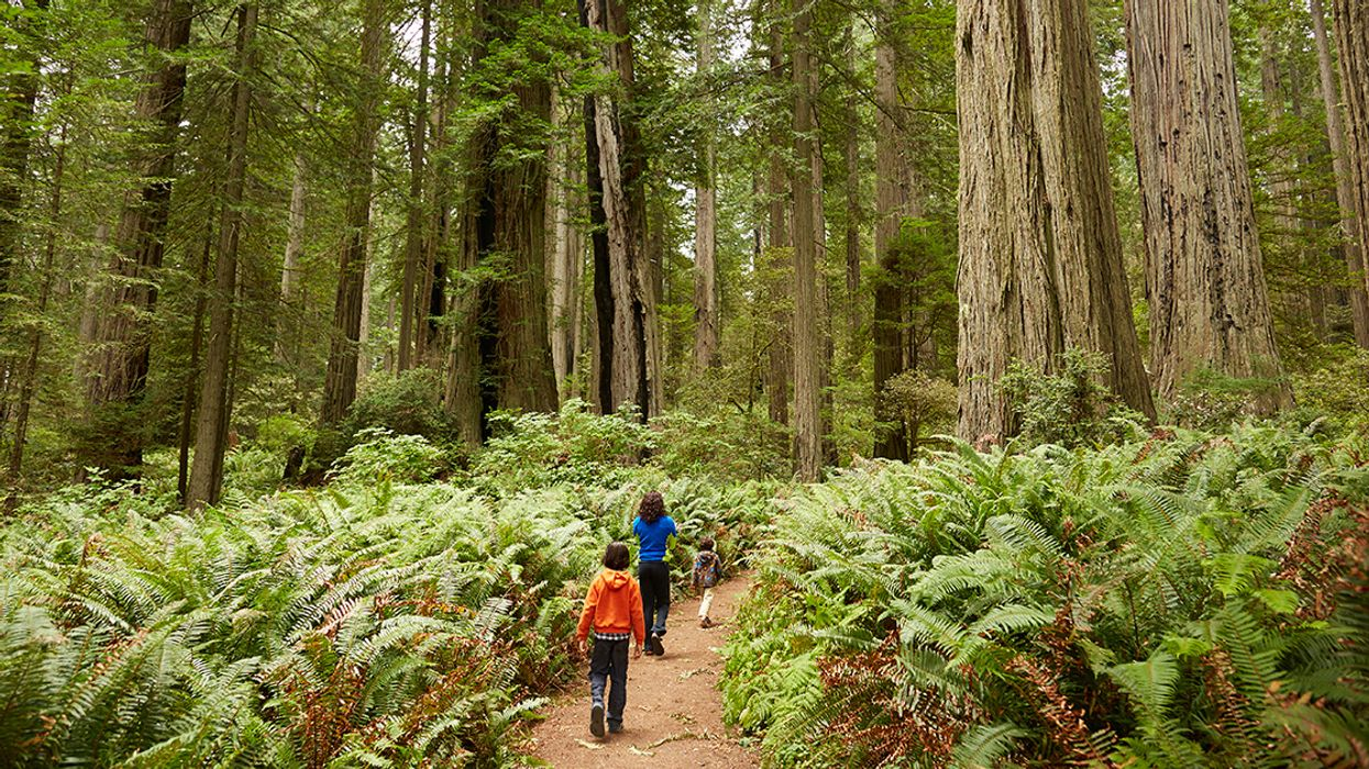 #FindYourPark and Kick Off National Park Week With a Free Visit Saturday