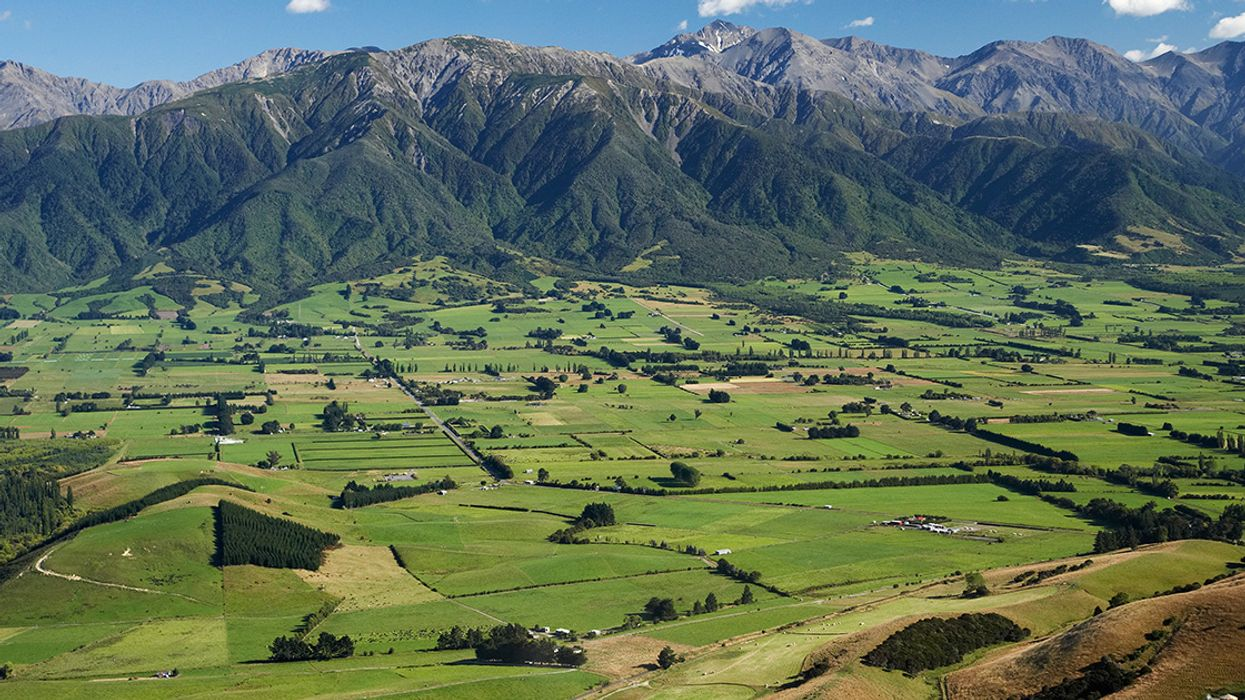 Major Threats to New Zealand's Environment Highlighted in Government Report