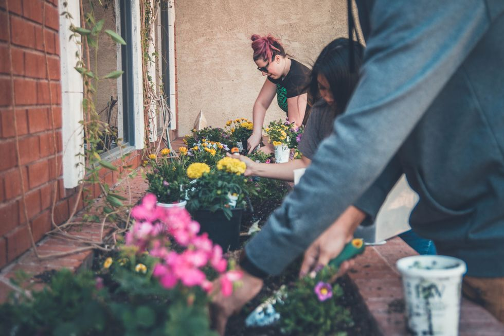 5 Easy Habits That Can Help Change The Earth And Make You Feel Accomplished This Earth Day
