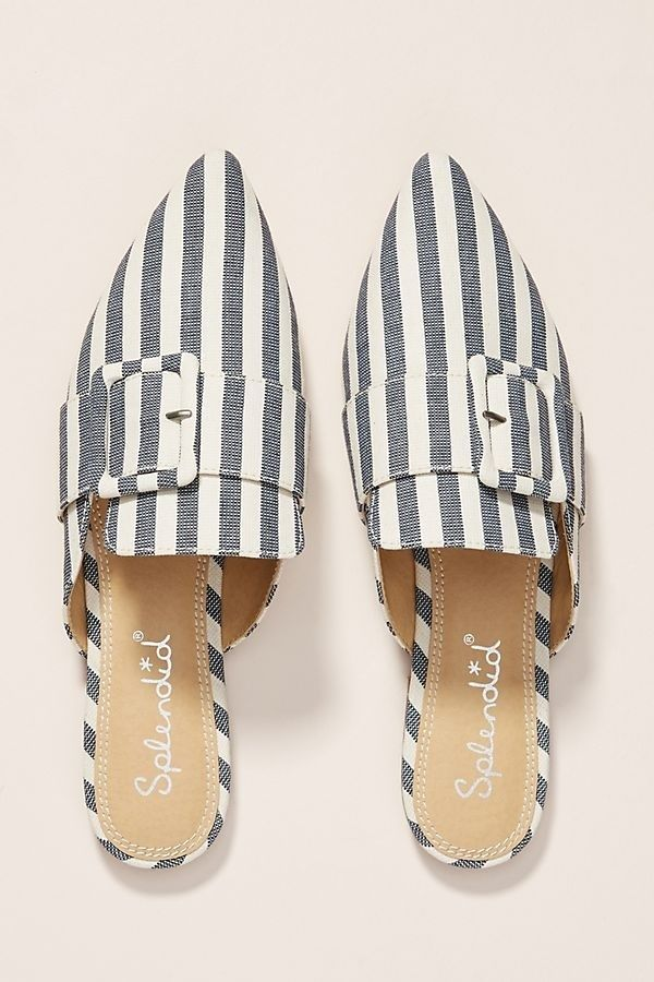 Anthropologie slides