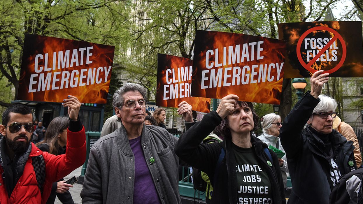 Poll: 96% of Democratic Voters Want 2020 Nominee to Prioritize Climate Action
