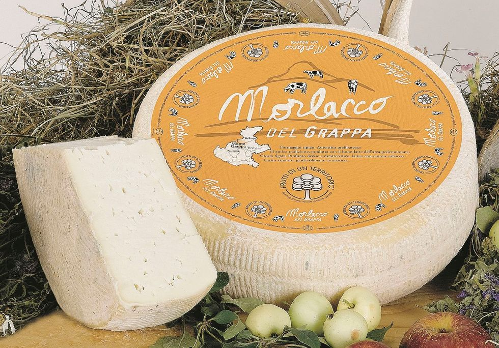 Morlacco, il formaggio dei nomadi che trovò casa sul monte Grappa