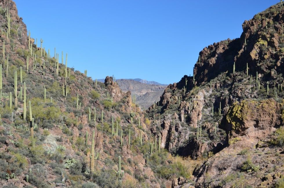 The 3 Best Hiking Trails In The Phoenix Metropolitan Area