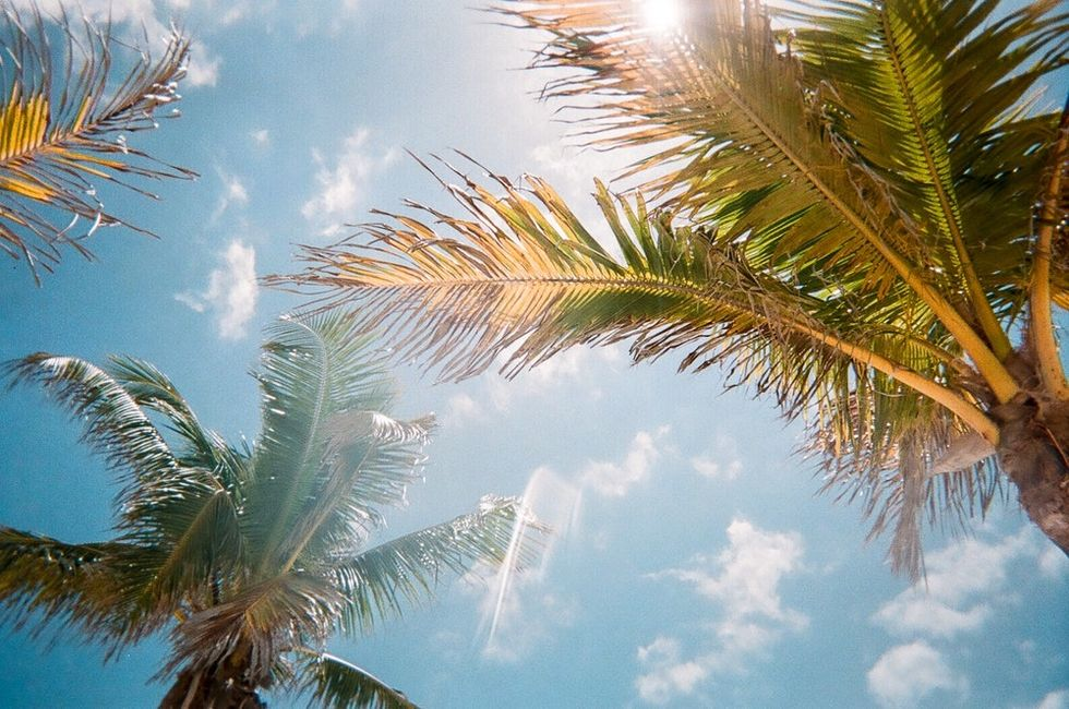10 Reasons Why Florida Is Special