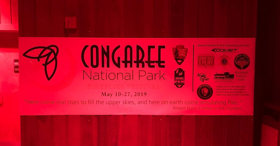 3 Reasons Congaree's Firefly Festival Is A Must-See During Your Summer Break