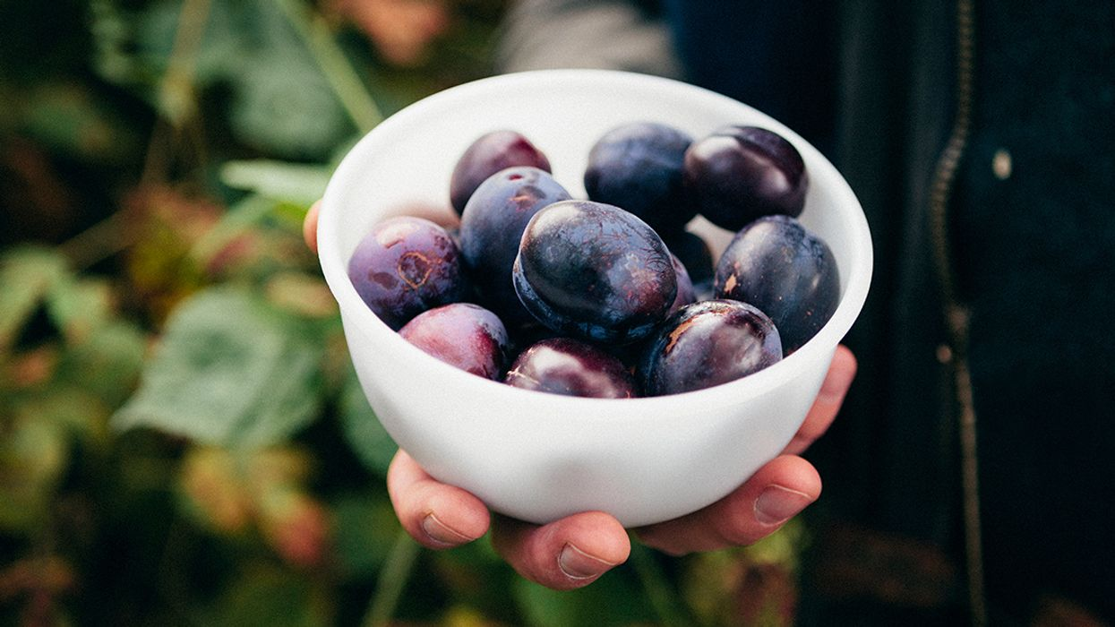 6 Delicious and Healthy Stone Fruits
