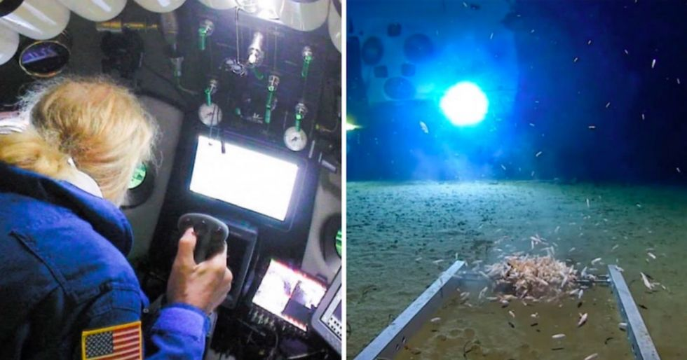 A submarine just took humans deeper into the ocean than ever before. And what did we find there? Trash.