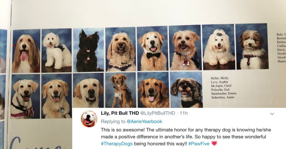 The therapy dogs that helped the Parkland survivors got their own yearbook page, and yes, we're crying.