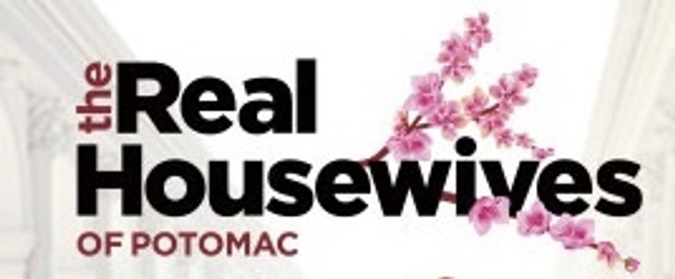 The Real Housewives Of PotomacIs My Guilty Pleasure