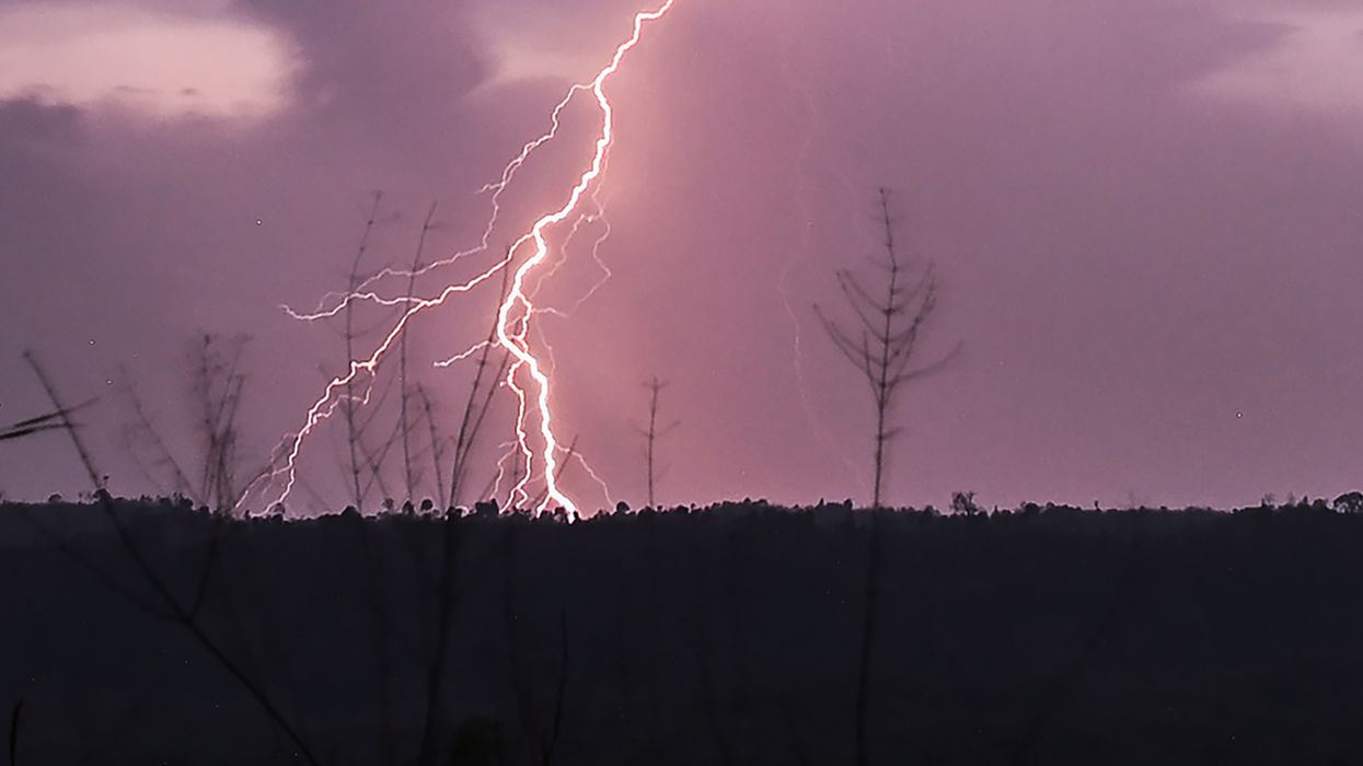 Lightning forced human ancestors to become bipedal, Kansas researchers say