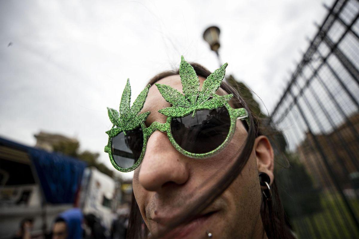 I venditori di cannabis preparano la causa