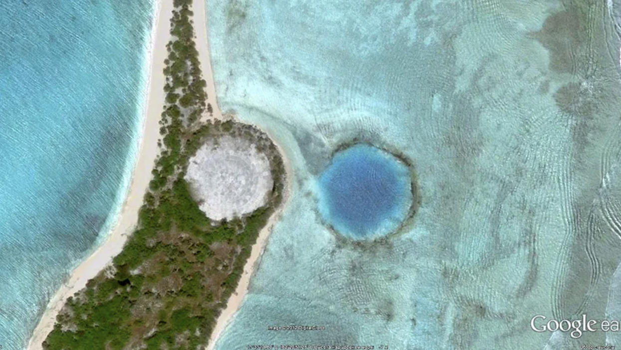 High Radiation Levels Found in Giant Clams Near U.S. Nuclear Dump Site on Marshall Islands