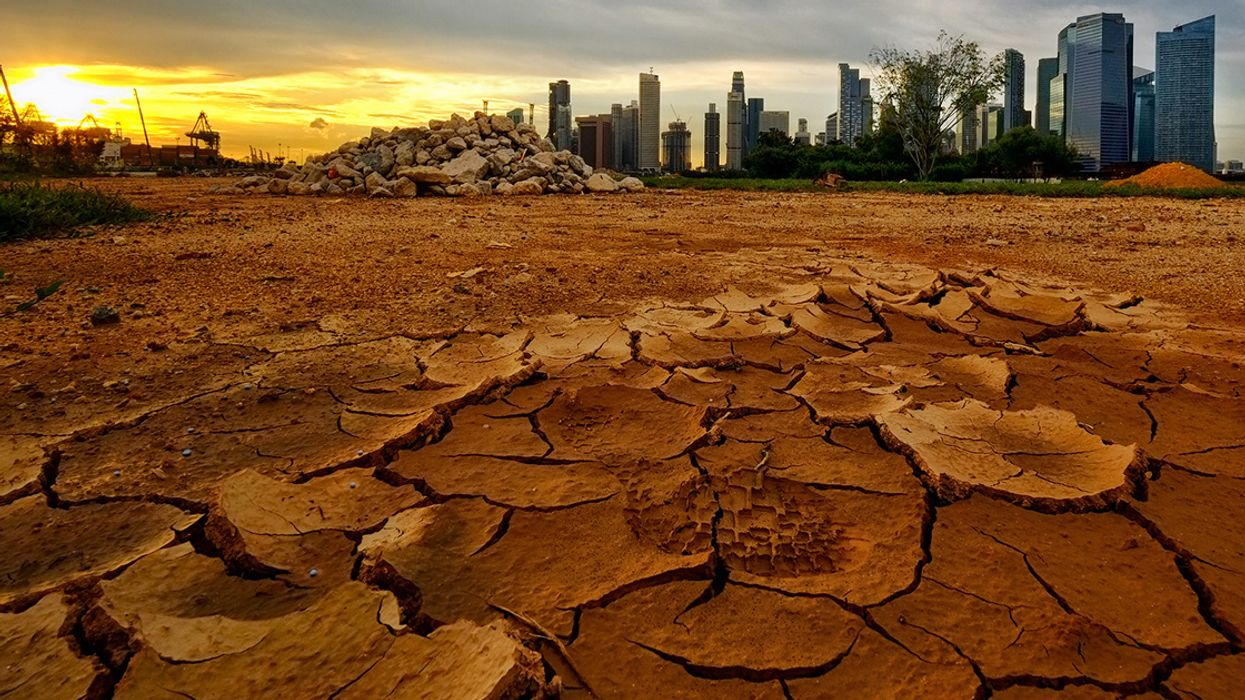 'Social Breakdown and Outright Chaos': Civilization Headed for Collapse by 2050, New Climate Report Warns