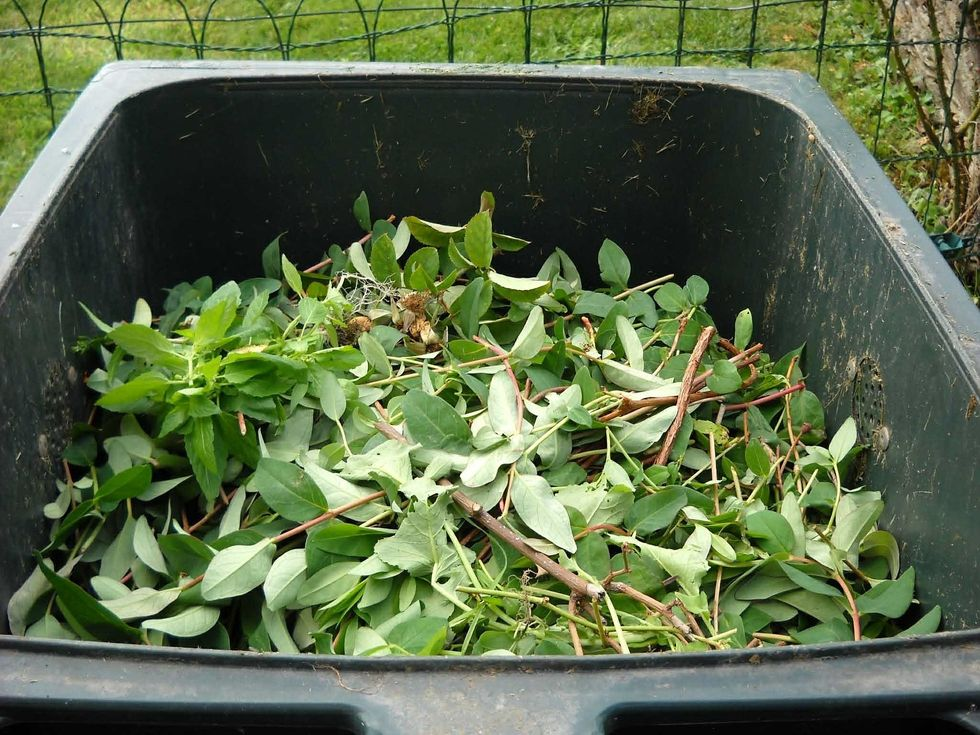 Getting Down And Dirty With At-Home Composting