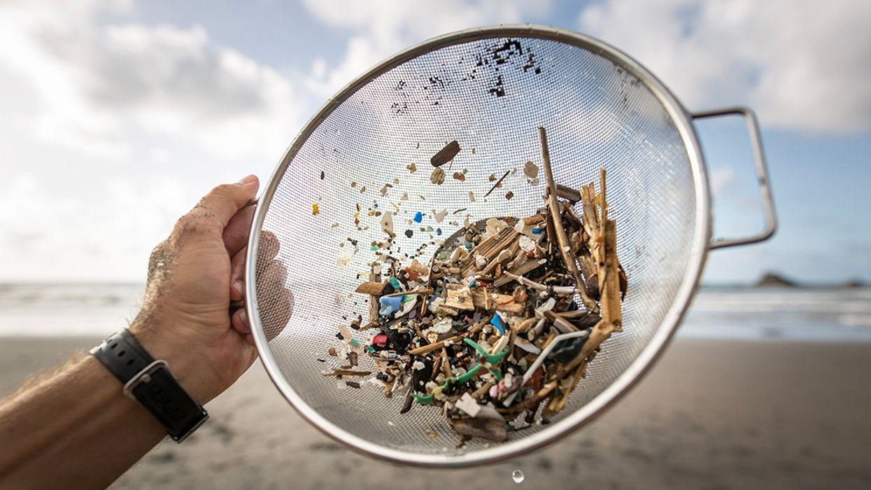 People Eat 50,000+ Microplastics Every Year, New Study Finds