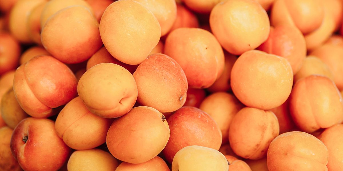 9 Health And Nutrition Benefits Of Apricots Ecowatch