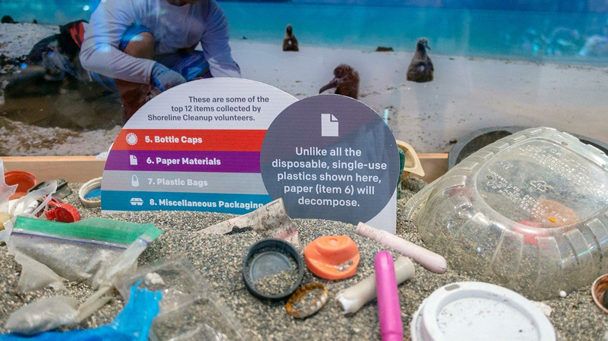 Canada to Announce Ban on Single-Use Plastics