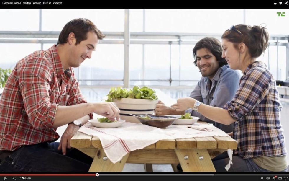 3 Friends Built A Garden — It's On A Roof, But That's Not Even The Best Part