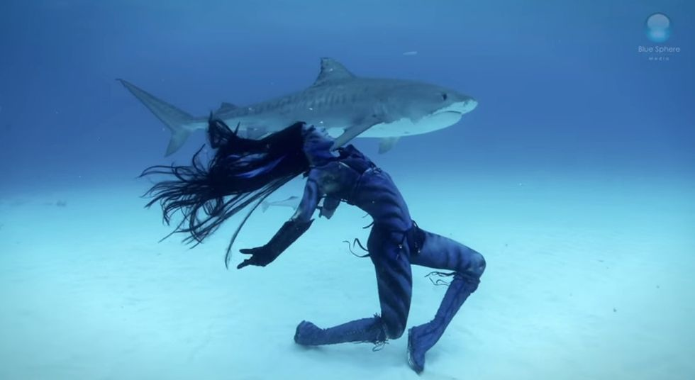 This professional mermaid is dancing with sharks to give the predators a PR boost.