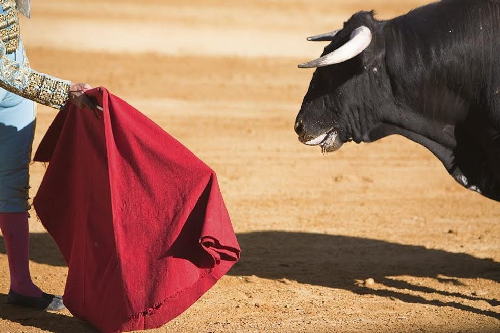 The running of the bulls seems like fun, except for the part where the bulls are killed inhumanely.