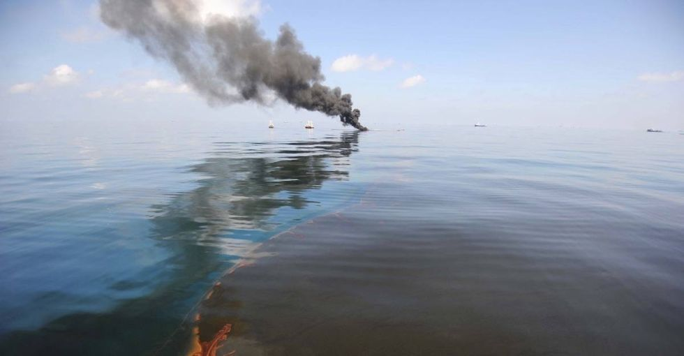 A whale interrupts a deep-sea expedition on the site of the largest oil spill in U.S. history.