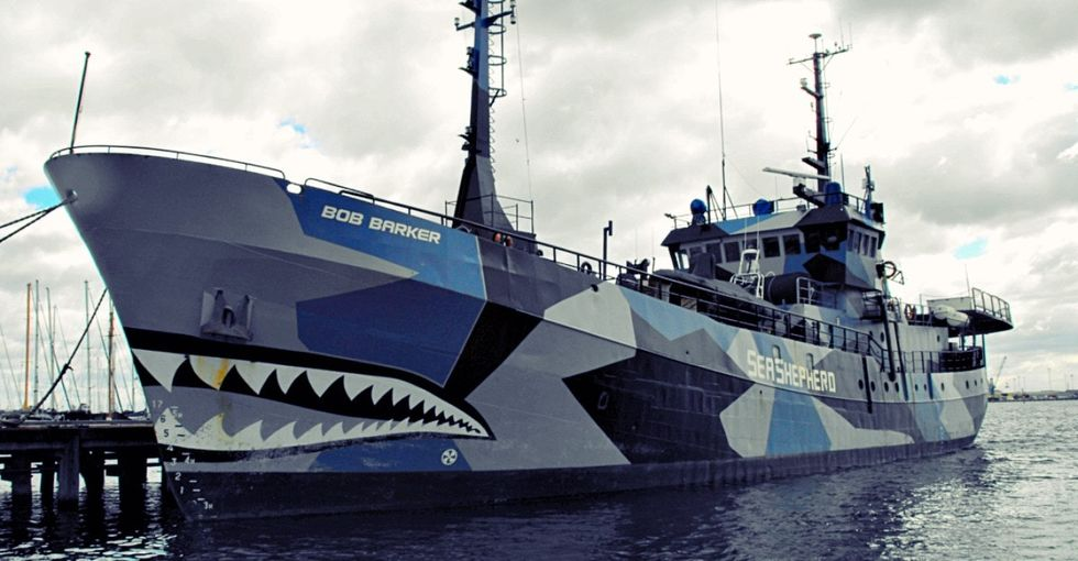 What do these 6 stars have in common? They fund sea vigilantes who take down evil sea criminals.