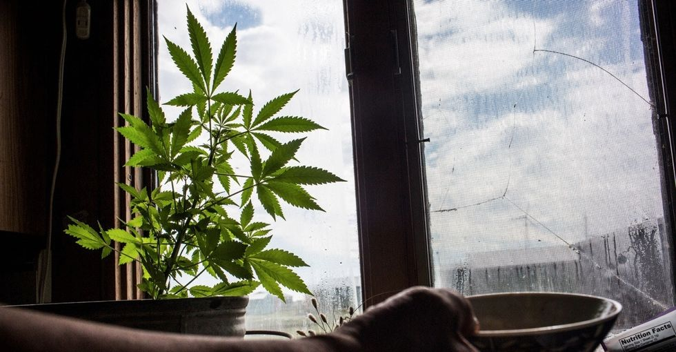 A soldier could face life in prison after being caught growing marijuana to treat his PTSD.