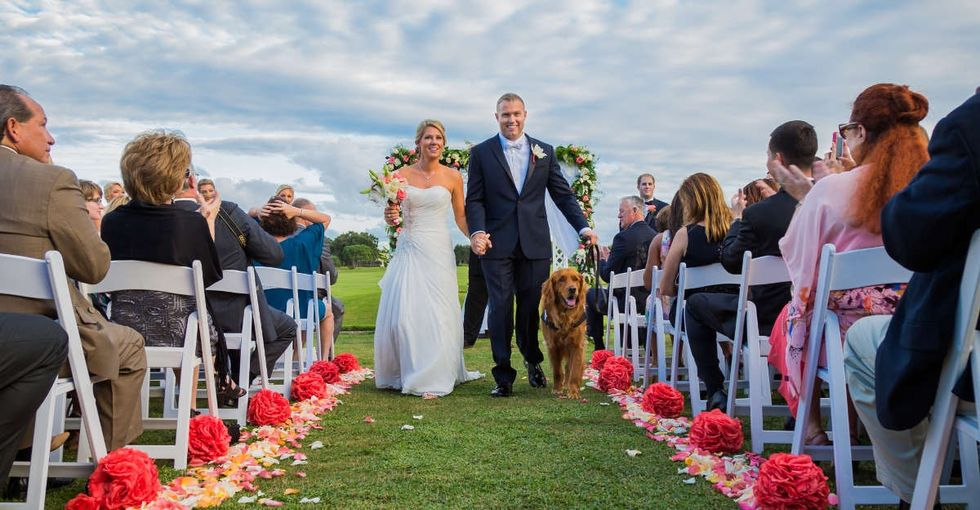 A service dog was best man at a veteran's wedding last year, and the photos are the best.