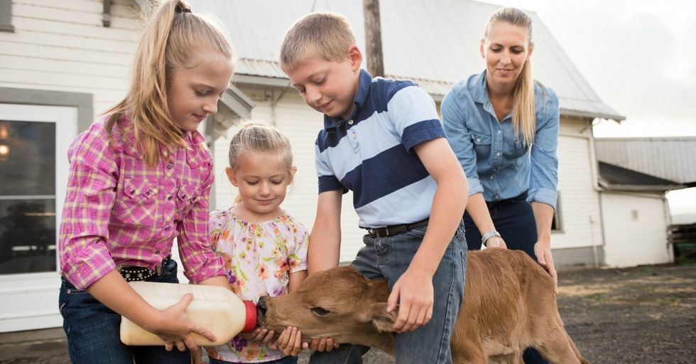A young mom running a dairy farm gives us a darling sneak peek behind the scenes.